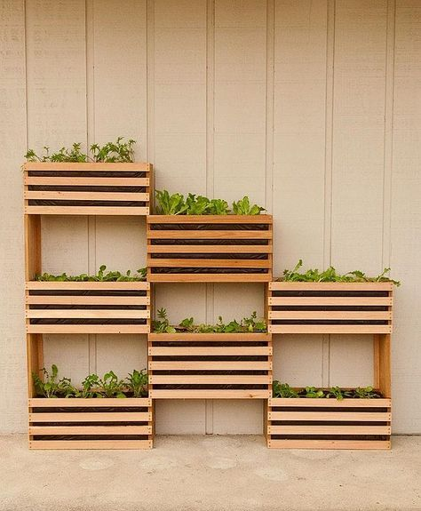 Vertical Garden DIY using wooden boxes Green DIY: Craft Your Own Vertical Vegetable Garden That Takes up Little Space
