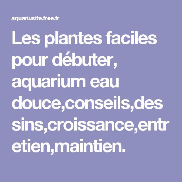 25 best ideas about plante aquarium eau douce on for Plante pour aquarium