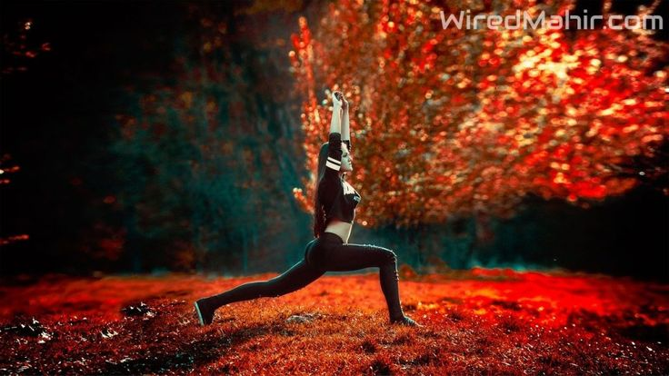 Best Yoga Apps are offering to improve the condition of the mind and body, make you strong mentally and physically, learn how to faced difficulties.