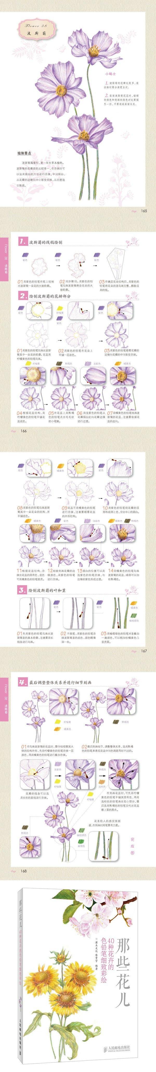 《那些花儿:40种花卉的色铅笔细致彩绘 ...