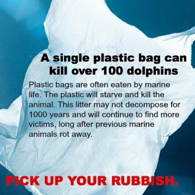 Pick up your rubbish