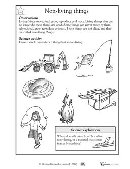 non living things first grade science worksheet education science worksheets first grade. Black Bedroom Furniture Sets. Home Design Ideas