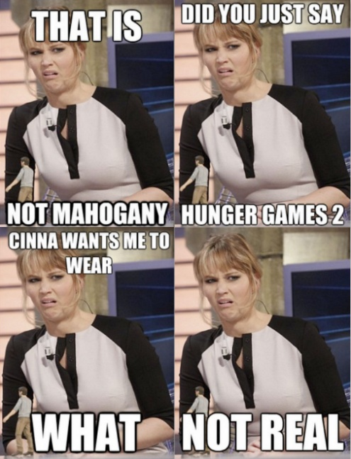 "Disgusted Katniss.  ""Hunger Games 2"", haha idiots. HAHAHAA"