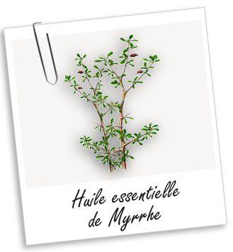 Huile essentielle Myrrhe chakra couronne