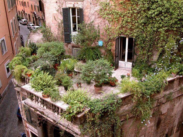 Roof top garden Rome