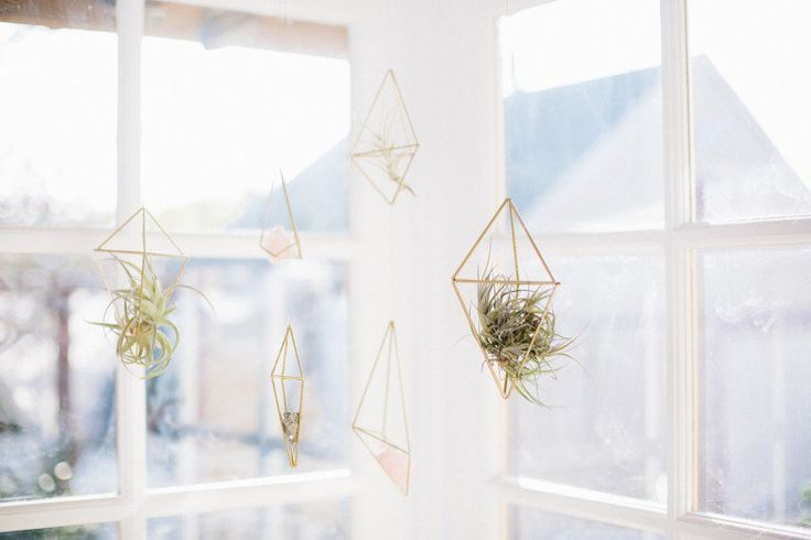 Hang DIY Air Plant Cages in groups to create a mobile effect in an area with a lot of sunlight. So delicate and beautiful!