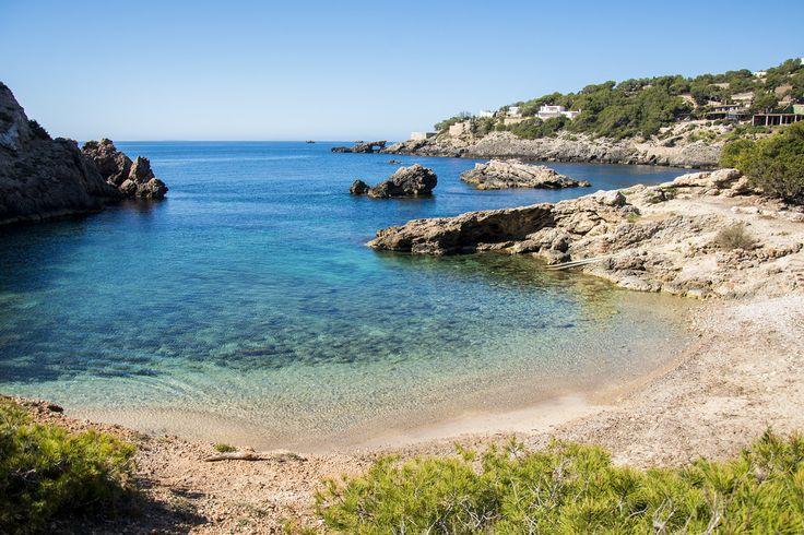 Ibiza beach of the week: Cala Olivera    The White Ibiza beach guide  http://www.white-ibiza.com/ibiza-beaches