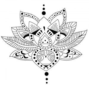 Flor de loto dibujo - Flor de Loto