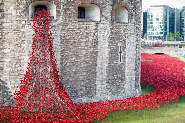 installation entitled 'Blood Swept Lands and Seas of Red' by artist Paul Cummins, made up of 888,246 ceramic poppies, in the moat of the Tower of London to commemorate the First World War
