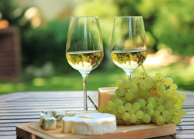 Et knippe røde og hvite viner på boks
