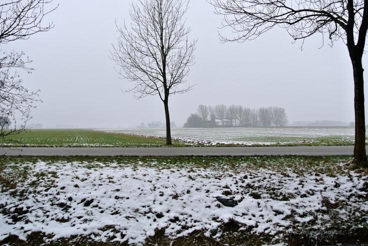 Groninger landschap, nabij Leens