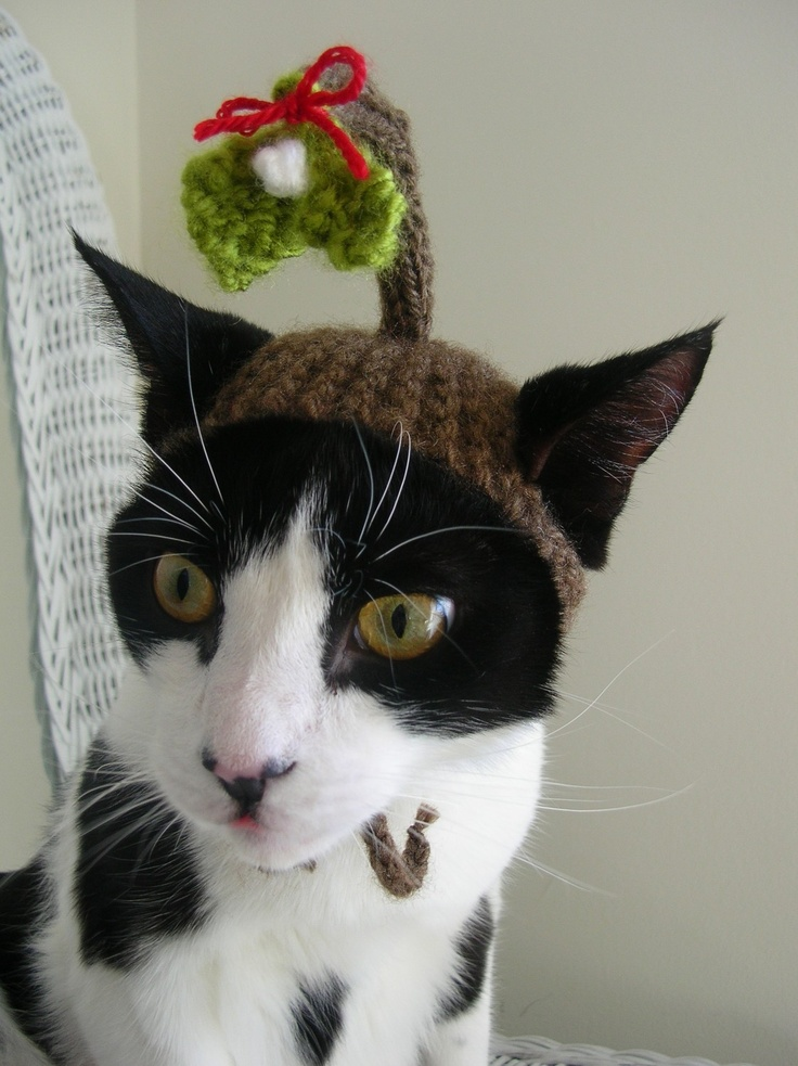 Under the Mistletoe Christmas Cat Hat. $18.00, via Etsy.