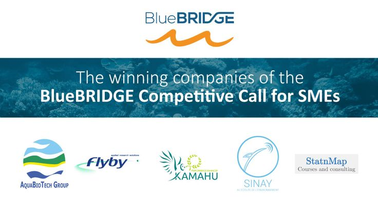Science fueling the growth of European private companies - Meet the winners of the BlueBRIDGE  Competitive Call for SMEs | BlueBRIDGE