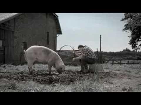 Marcassou hoop commercial