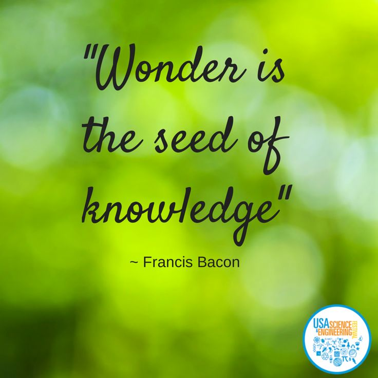 """""""Wonder is the seed of knowledge.""""  -Francis Bacon #Scifest"""