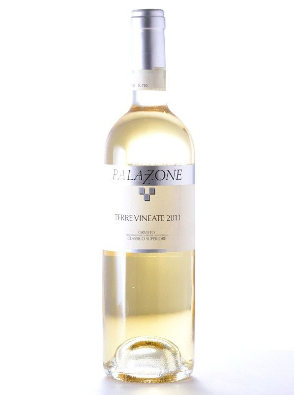 perfect for pasta dishes. Intense yet refreshingly dry. Elegant with vivid bouquet #summerwines #67wine http://www.67wine.com/sku043315_PALAZZONE-ORVIETO-CLASSICO-SUPERIORE-TERRE-VINEATE-750ML-2012