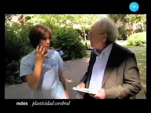 """Neuroplasticidad y Educación - """"Entrena tu cerebro, cambia tu mente"""", 2009 - YouTube"""