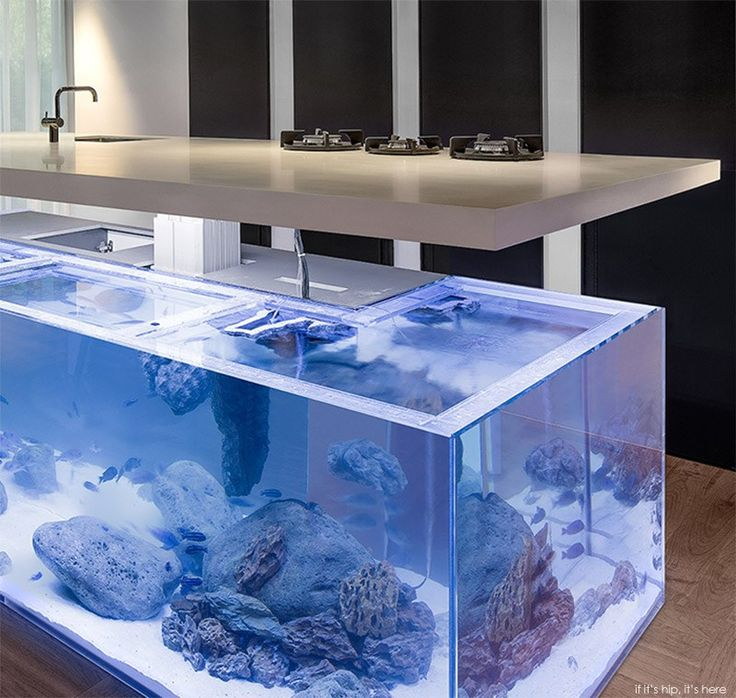 The Ocean Kitchen By Robert Kolenik Eco Chic Design Is A Made To Order,  L Shaped Kitchen Counter With Mechanized Stove Top That Sits Upon A Giant  Aquarium.