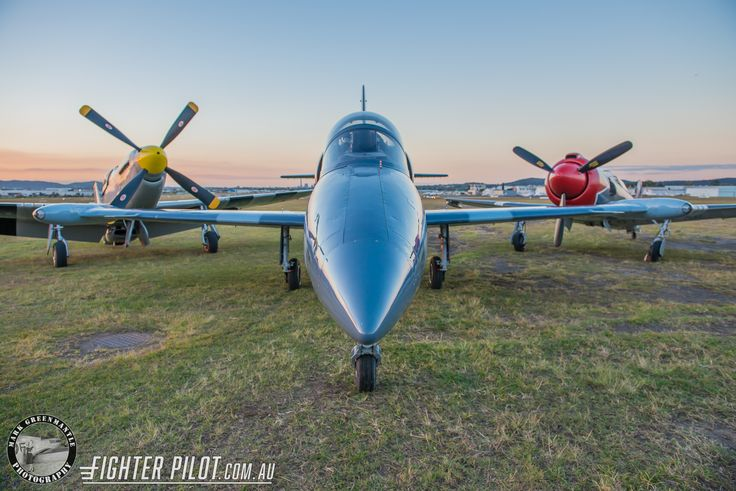 Fighter Pilot P-51D Mustang, L-39 Albatros and Yak-3 Steadfast. Photo by Mark Greenmantle Photography.
