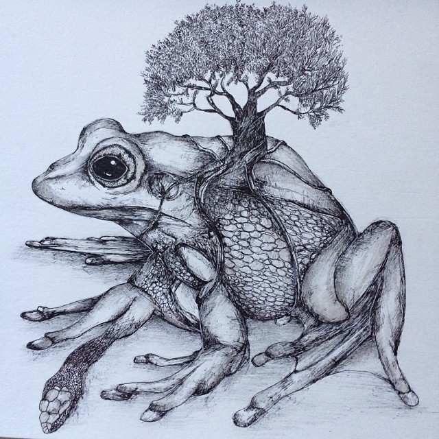 6.-Gambar-Lukisan-Hewan-Mutan-Pensil-Karya-Alfred-Basha-Katak-.jpg (640×640)