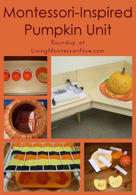Montessori-Inspired Pumpkin Unit #SuliaMoms #education
