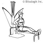 Website with amazing bowflex workouts