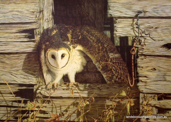 Too Light for Flight - Greg Postle RARE from Landsborough Galleries - Buy Online