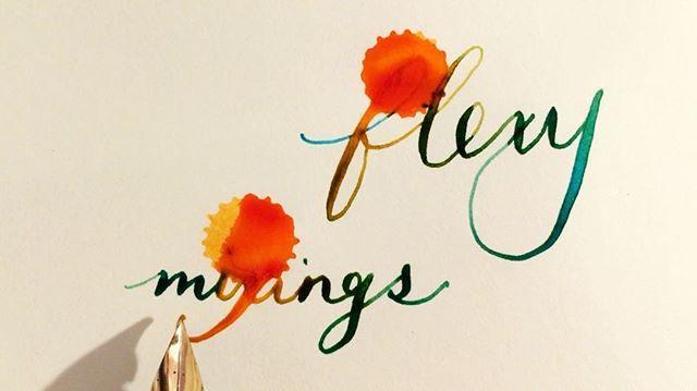 Flexy ink mixings! --- Ink drops: Sailor Jentle Apricot Pen: Mabie Todd Swan SF1 Nib: no. 1  Ink: Caran d'Ache Caribbean SeA Paper: @leuchtturm1917 notebook --- #fpn #fpgeeks #fountainpen #pen #pens #penporn #penaddict #gourmetpens #handwriting #handlettering #type #goodtype #calligraphy #calligraphymasters #calligraphyvideo #video #videooftheday  #relax #satisfying #insta #instagram #instagood #instalike #instadaily #instaart #instaartist #art #artstagram