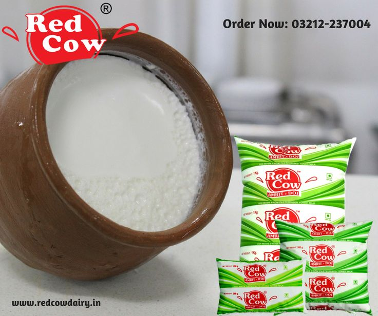 Give a full punch to your taste with Frozen Dahi