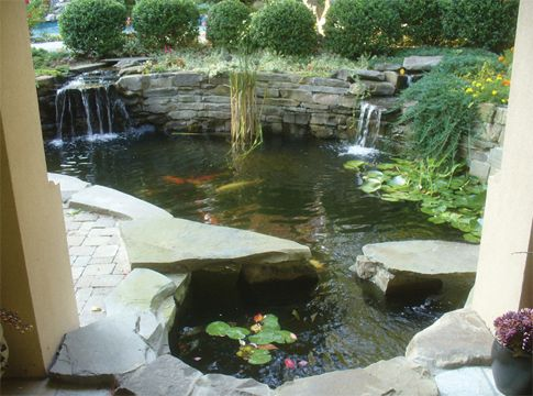 Best 25 Pond Construction Ideas On Pinterest Natural