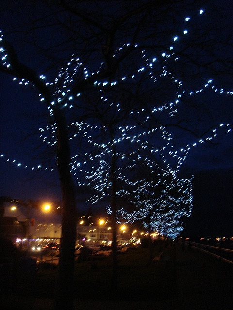 "Promenade Beauty by ""M"" PEARL, via Flickr #whiterock #whiterockpier #whiterockhomes #whiterockhillside #garymcgrattenrealtor"