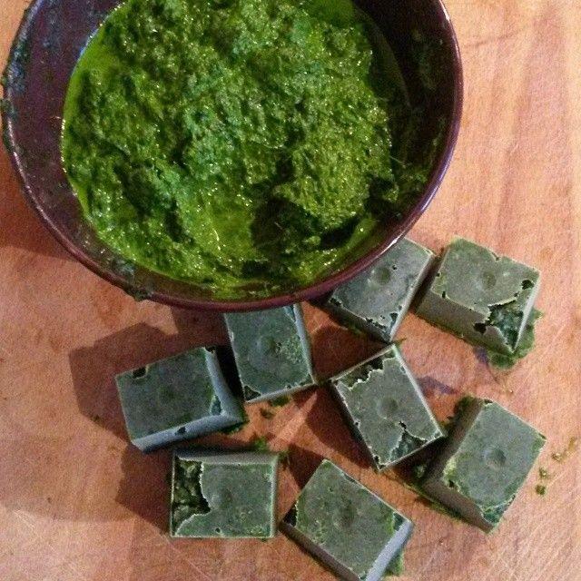 Pesto à l'ail des ours - ail des ours + poudre d'amande + huile d'olive