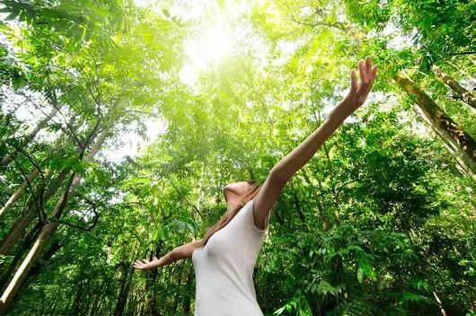 Day Retreat: Meditation, Yoga, Lunch and Activating Your Intuition, Finding Your Voice #AYRFCIDurhamRegion #DurhamRegion #DurhamRegionEvents #DurhamRegionEvent https://www.facebook.com/events/1740155222928251/