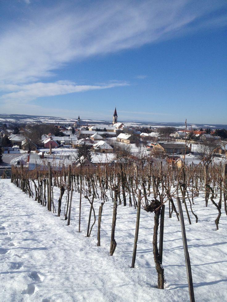 Machán-Csetvei Krisztina Vénhegyi tél A képet a Vénhegyen készítettem 02.01-én. Több kép Krisztinától: https://www.facebook.com/welovemor