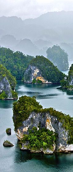 Indonesia always be the most beauty :) Raja Ampat Islands By Yann Arthus-Bertrand #indonesia #travel