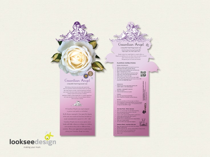 Knight's Roses Guardian Angel Rose Label (pink) - Designed by Looksee Design