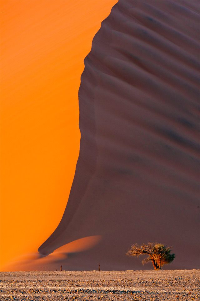 Gorgeous Smithsonian Photo Contest Ideas On Pinterest Namib - The incredible winners of the 14th smithsonian photo competition