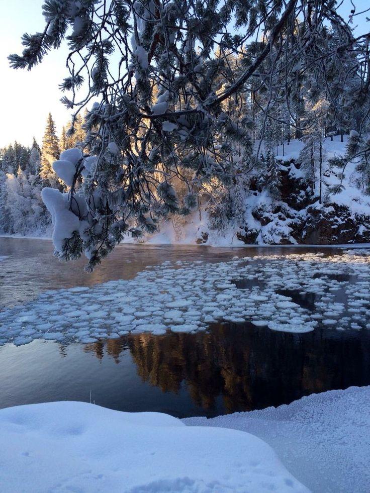 Lapland 2014