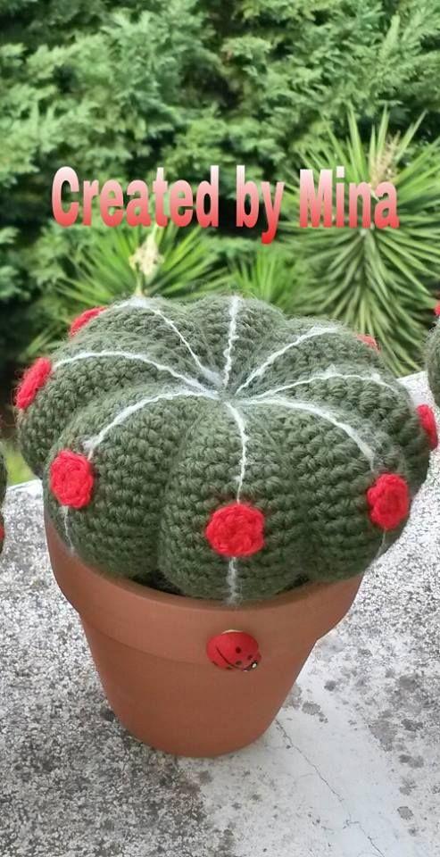 Cactus realizzato con tecnica amigurumi