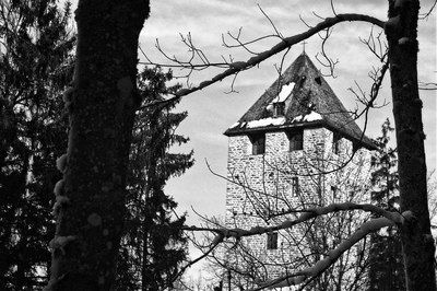 bwstock.photography - photo | free download black and white photos  //  #tower #monastery #trees