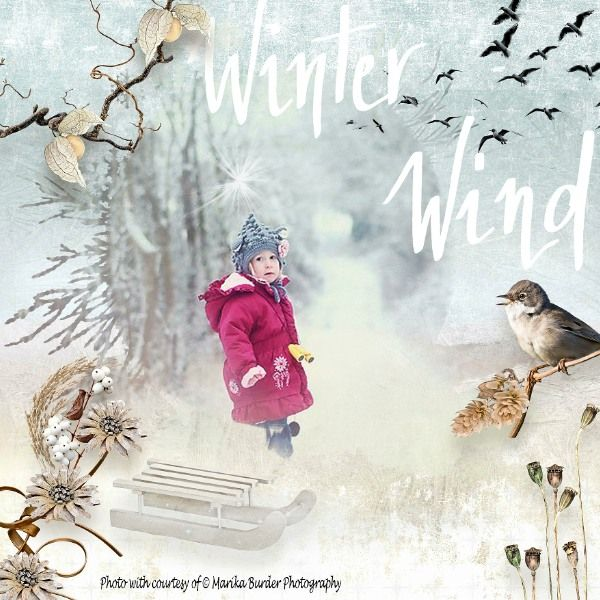 WINTER WIND -30% with the purchase of the collection  http://www.oscraps.com/shop/D_s-Design/ Photo: Marika Burder Photography  https://www.facebook.com/Marika-Burders-Photography-Filling-the-void-211348915551578/