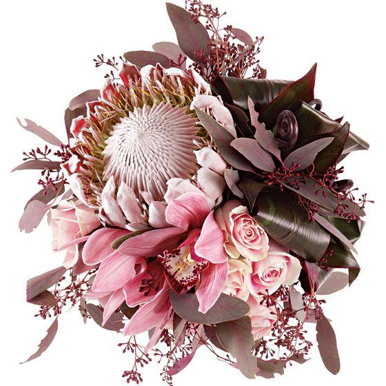 King Protea, Ti Leaves, Roses, Orchids, red seeded euc and fiddlehead fern shoots