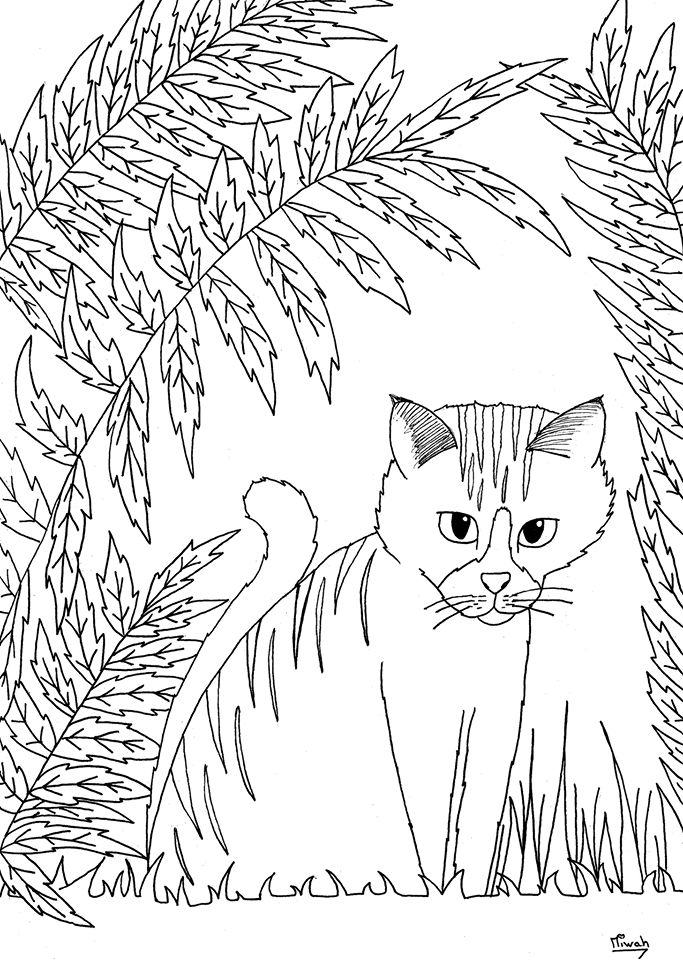 free coloring page coloring little cute cat by miwah little