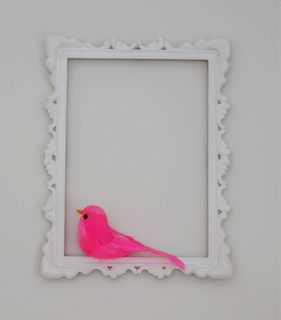 Pink framed bird...I would use a small frame. This is cute for a little girls room!