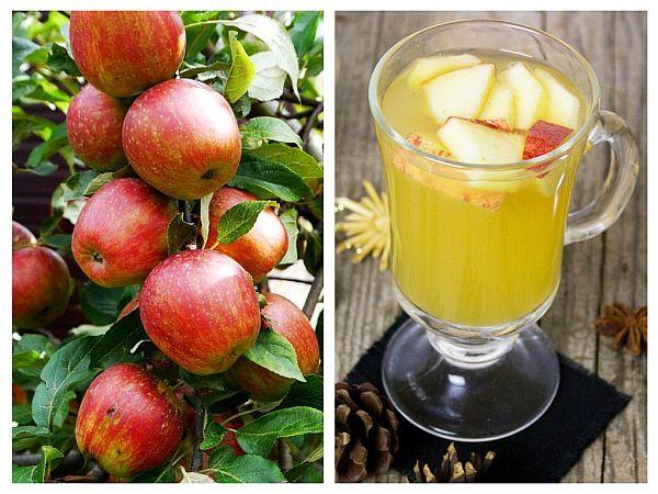 Studiile preclinice au arătat că sucul de măr reduce daunele oxidative de la nivelul sistemului nervos central, îmbunătățește performanța cognitivă,