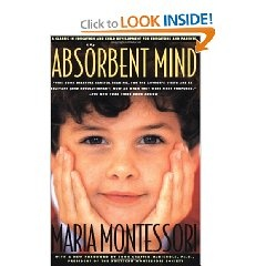 This is a wonderful book written by Maria Montessori, describing her journey through creating her Child Development theory during a child's first 6 years.