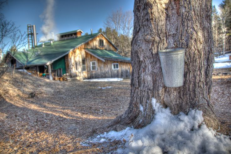 Fulton's Pancake House & Sugar Bush. 400 tranquil forested acres nestled between the picturesque towns of Almonte and Pakenham, Fulton's is one of the best-loved and well-known sugar camps in Lanark County (west of Ottawa). For more information on capital sites and Canadian heritage visit www.ottawatourism.ca/en/visitors/what-to-do/capital-heritage