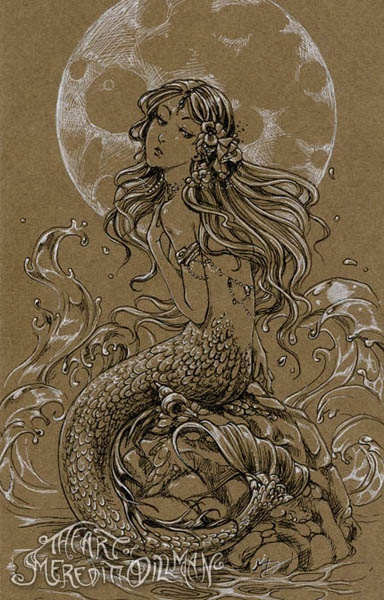 Moon Mermaid by Meredith Dillman