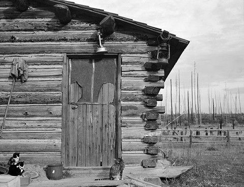 Log Home, Priest River Peninsula, Bonner County, Idaho - by Dorothea Lange 20x200