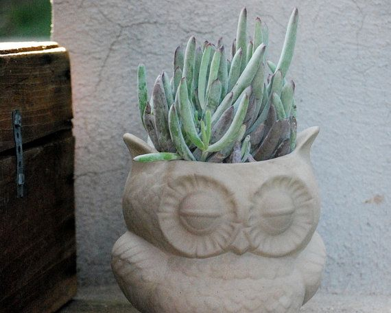 large owl planter natural by claylicious on Etsy